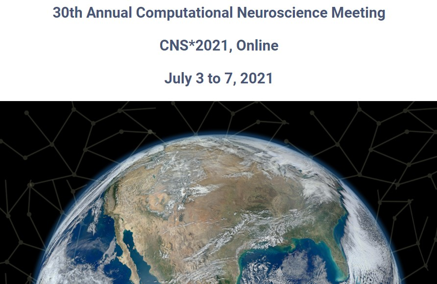 CNS 2021 online conference image