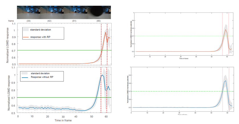Fig.2. Comparison between our proposed method and previous works. Left for LGMD1 neural network while the right is for LGMD2.