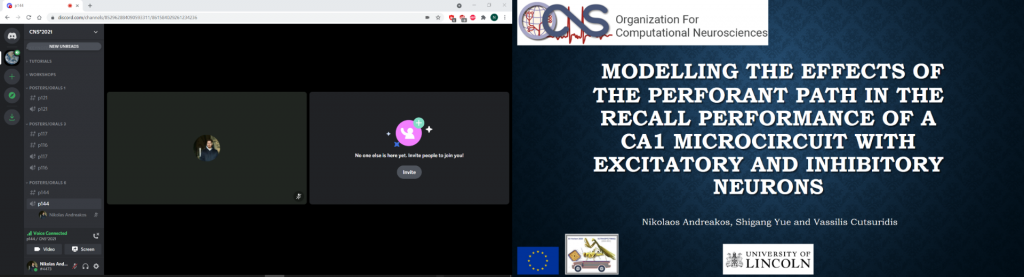 Nikolas Andreakos CNS 2021 poster presentation