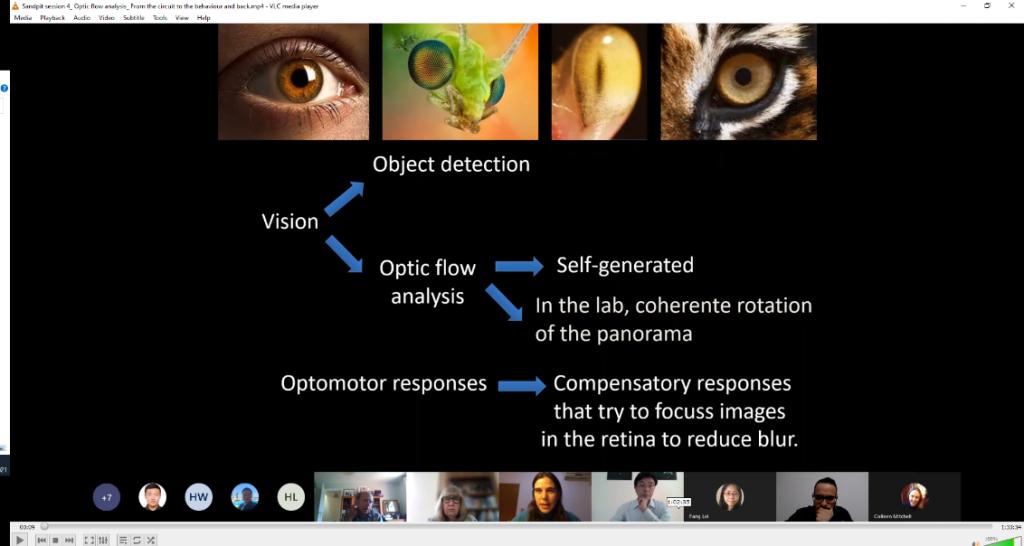 Presentation by Dr Julieta Sztarker