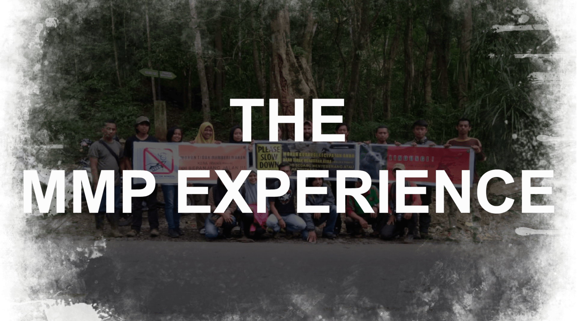 The MMP Experience