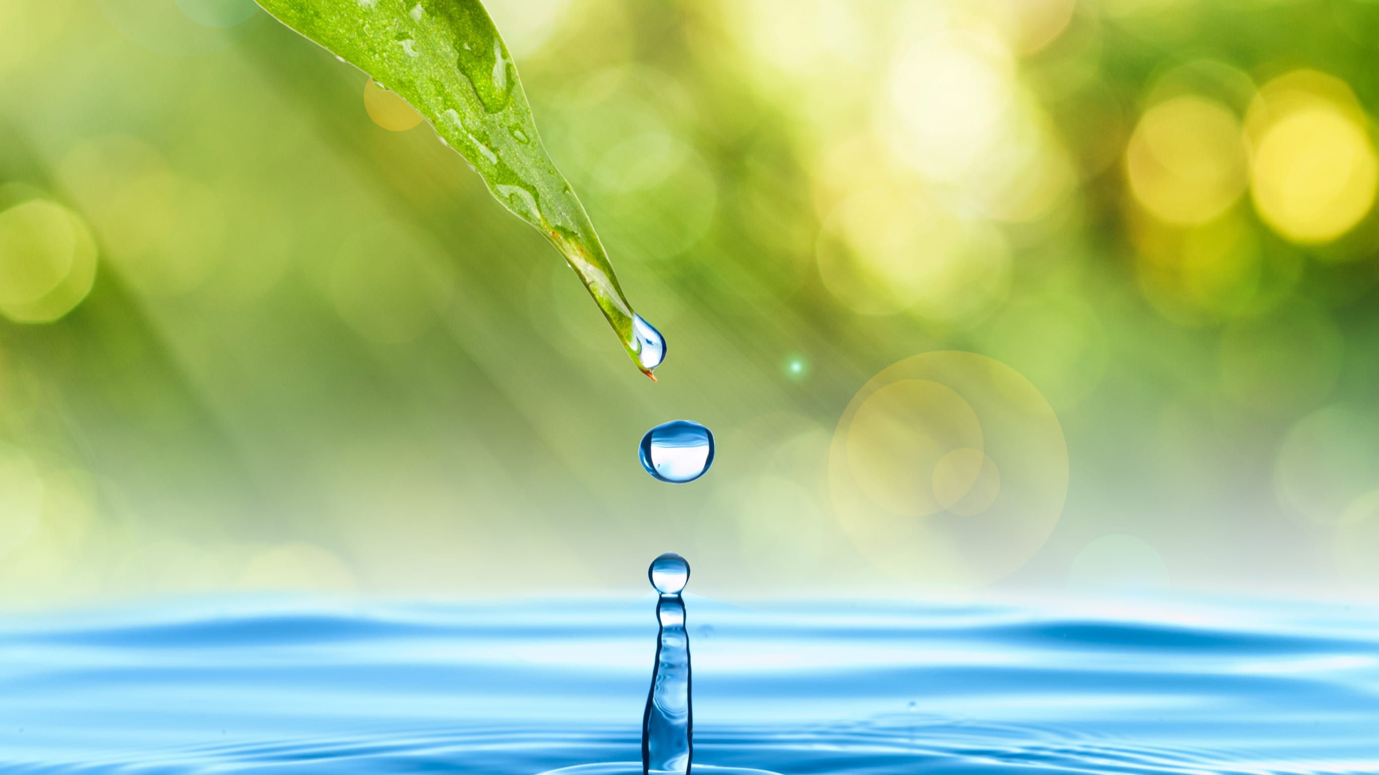 stock image of a water droplet