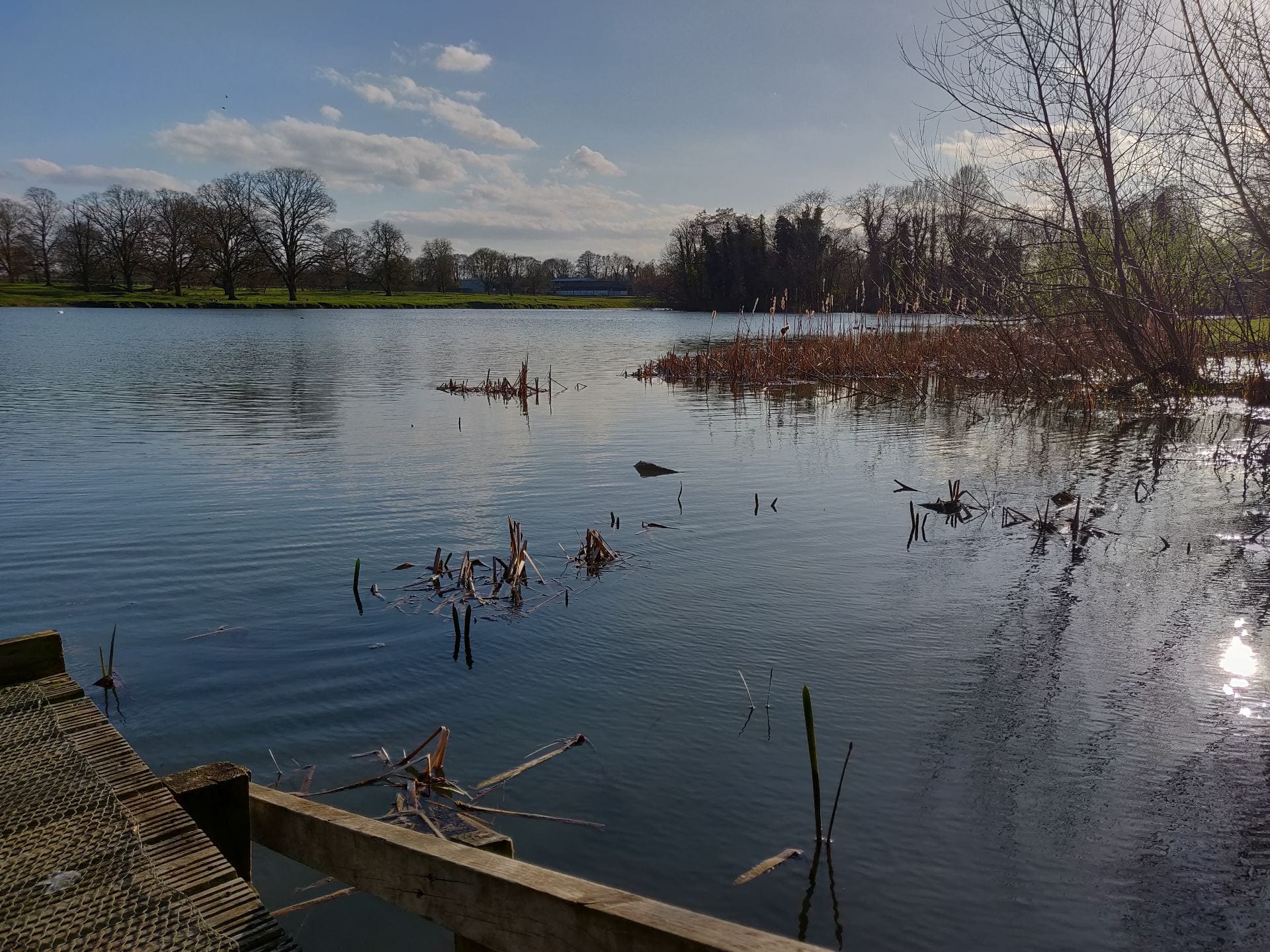 Riseholme Lake