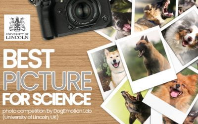 """Snapshots for Science"" – Photo Competition by the Dog Emotion Lab"