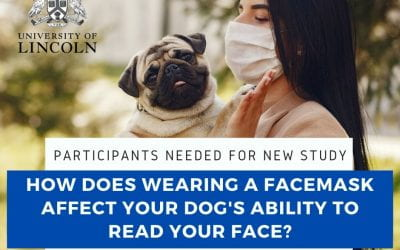 "How does ""censoring"" of your face affect your dog?"