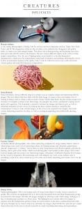 Creatures Influences