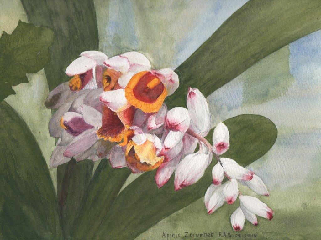 Ann Bracey artwork 1