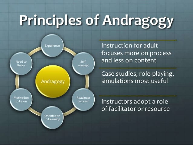 The principles of andragogy in a diagram