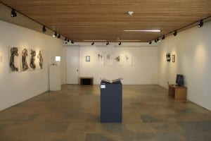 Mondegren Ekphrasis, The Collection, Lincoln, curated by Ashleigh MacDougall.j2