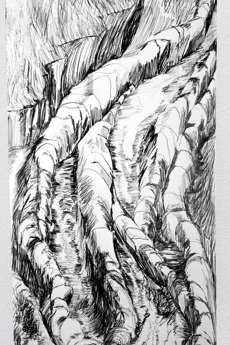 Diane E Hall_Drawing_4w