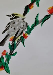 bird-1114842_960_720