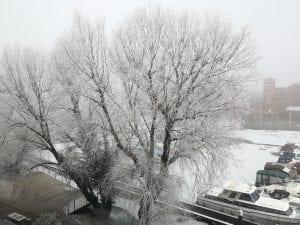 Frozen Brayford Pool