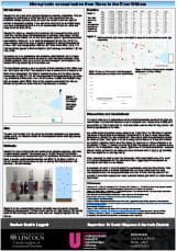 UROs 2019 Project Poster