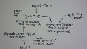 brighter hub
