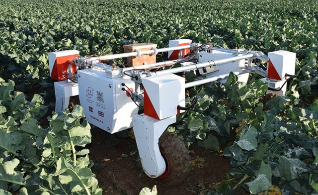 Lincoln to launch world's first Centre for Doctoral Training in Agri-Food Robotics