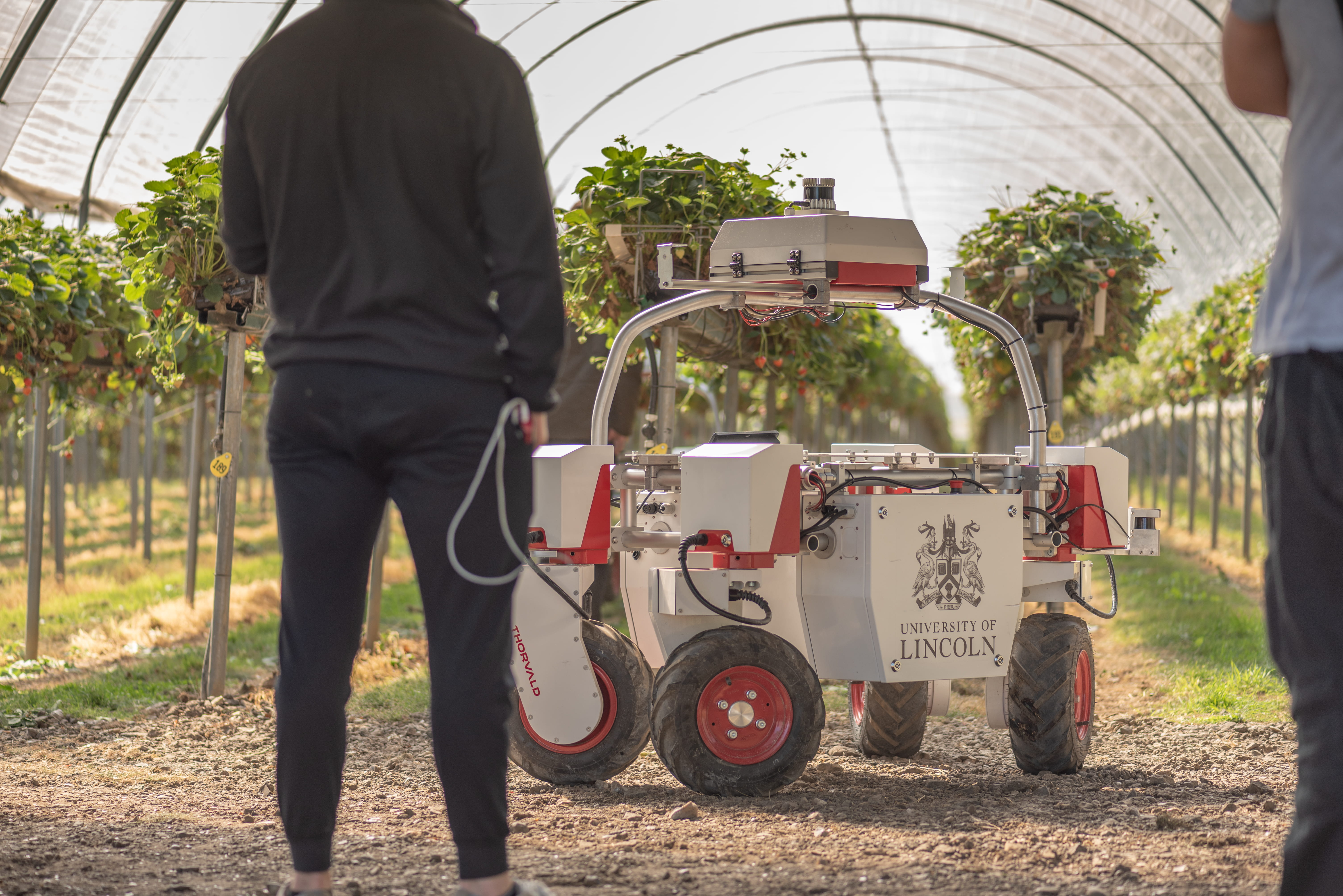 Two people looking at Lincoln branded Thorvald robot at strawberry farm