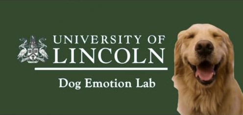 Advert for the University of Lincoln Dog Emotion Lab, with photo of smiling golden retriever
