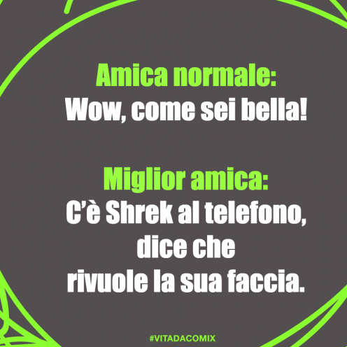 'Normal friend: 'Wow, how beautiful you are!' / Bestt friend: It's Shrek at the phone says he wants back his face.' Meme shared on Facebook by Comix