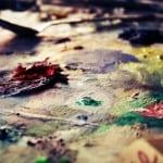 Paint_Palette_by_VintageFan-1024x682