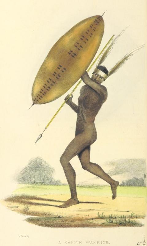 Kaffir warrior