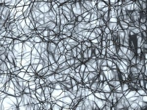 neurons-877577_1920
