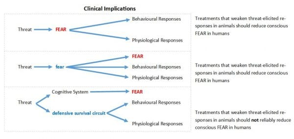 Clinical Implications Fear Research