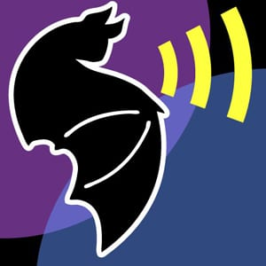 The iBats logo