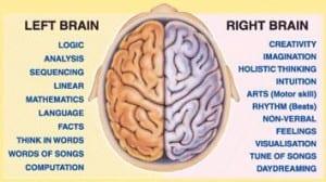 Brain for Georgie blog post
