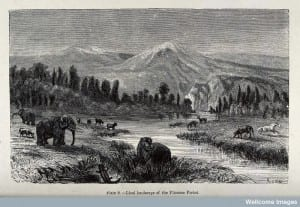 V0023203 An ideal landscape of the Pliocene period with elephants, hi