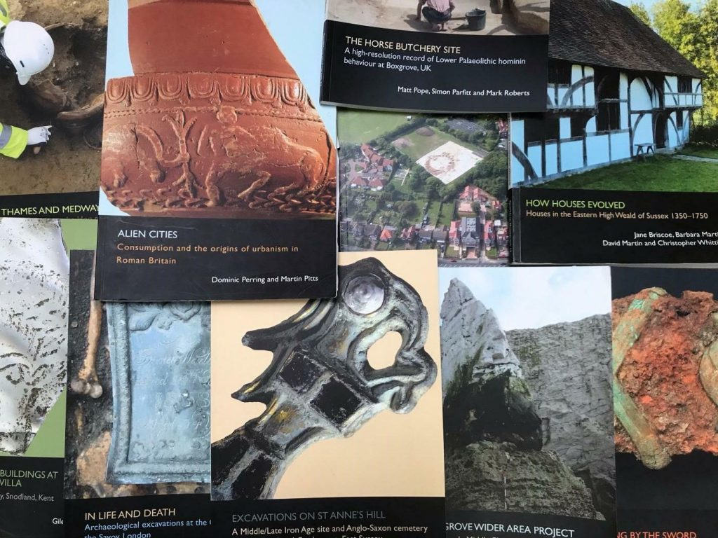 """Alt text: A pile of books fills the frame, showing partial front covers. They include titles such as """"The Horse Butchery Site"""", """"How Houses Evolved"""", and """"Alien Cities"""". Their front covers have a uniform style and depict different archaeological finds, sites and buildings."""