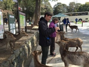 Peter and I feeding the tame deer in Nara park