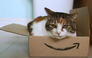 Amazon Cat - Creative Commons/Stephen Woods/Flickr.com
