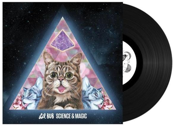 lil bub record cropped