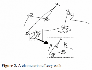 Diagram of a Levy walk.