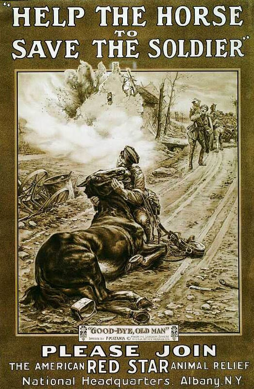 """Goodbye, Old Man"" used in a poster. Credit RSPCA."