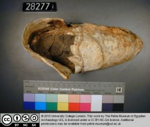 Ancient Egyptian shoe (UC28271) and sock (UC16767.