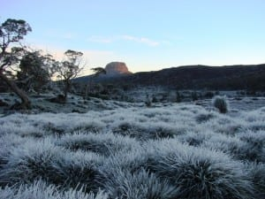Winter in the Tasmanian Highlands