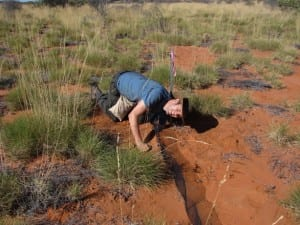 Checking a pitfall trap