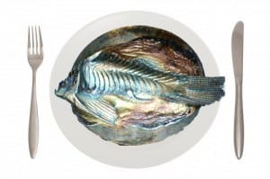 EM fish on a plate