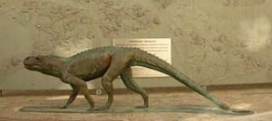 An image of what it is believed a Chirotherium would have looked like