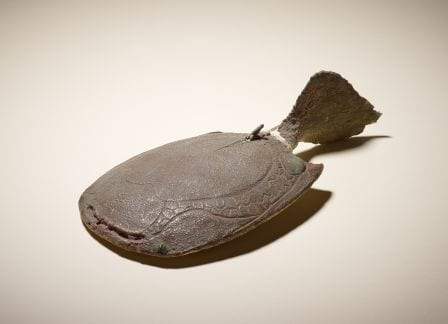 Grant Museum Pancake Fish Model