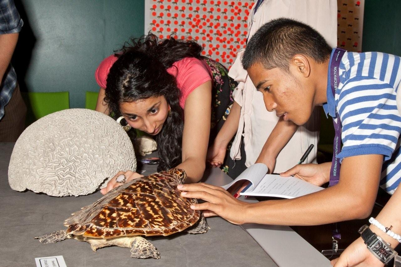 Students explore specimins in The Grant Museum