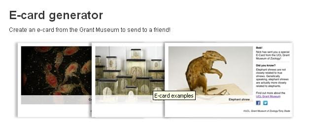 Image of Grant Museum E card selector