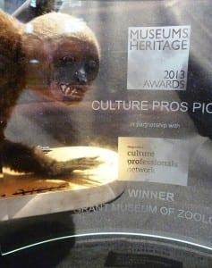 Awards are not for monkeys