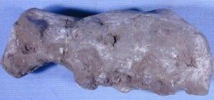 A legless sheep
