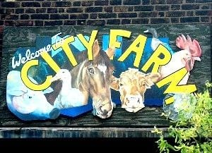 Kentish Town city farm, a modern development of the petting zoo with the countryside truly established in an urban setting. copyright http://www.ktcityfarm.org.uk/
