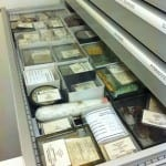 A drawer of Geology Specimens.  Each one has its own specific place its meant to live.