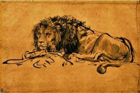 This 17th century illustration by the dutch artist Rembrandt Harmenszoon van Rijn is allegedly of a Cape Lion.  (Copyright expired).
