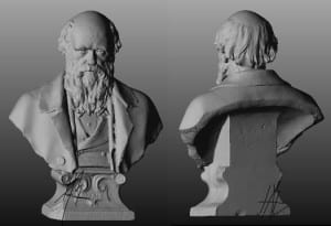 3D Scan of the Grant Museum's Darwin bust by Mona Hess (all rights reserved)