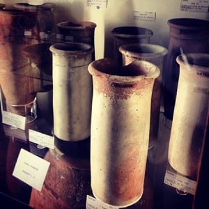 Jostling for attention on the busy shelves of the Petrie Pottery Gallery